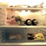 Kateri hladilnik izbrati?
