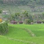 Filipini, otočje kjer se uresničijo vse želje