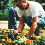 Urejanje okolja in vrtnarstvo