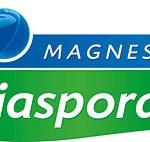 Kaj je Magnesium Diasporal in kdo naj ga uporablja?