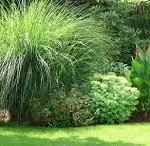 Vrt, zelena oaza